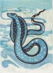 cobra water snake