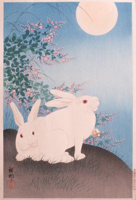 rabbits full moon
